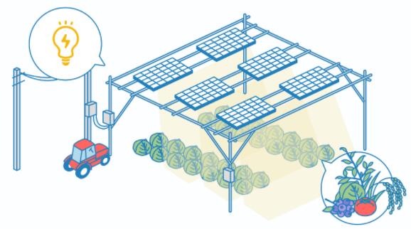solar-sharing